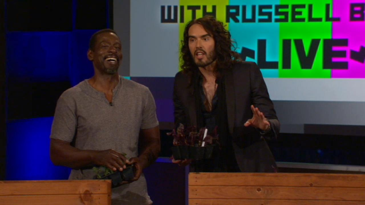 BrandX with Russell Brand: Growing Pains